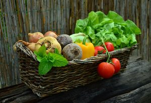 My Top 10 Tips for Going Vegan