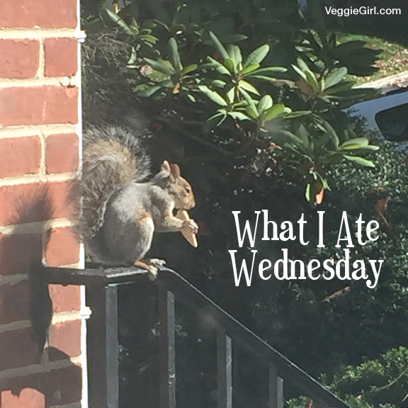 What I Ate Squirrel