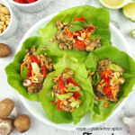 Vegan Lettuce Wraps on plate with text overlay