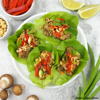 wraps on plate with mushrooms, scallions, limes, peppers, and peanuts