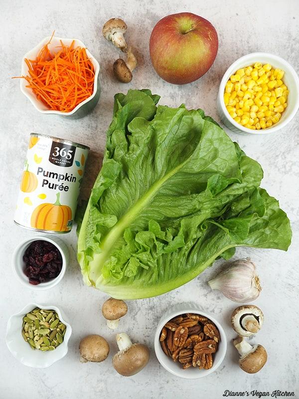 carrots, mushrooms, apple, corn, lettuce, pecans, pumpkin seeds, cranberries, and pumpkin