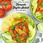 vegan fajita salad with text overlay