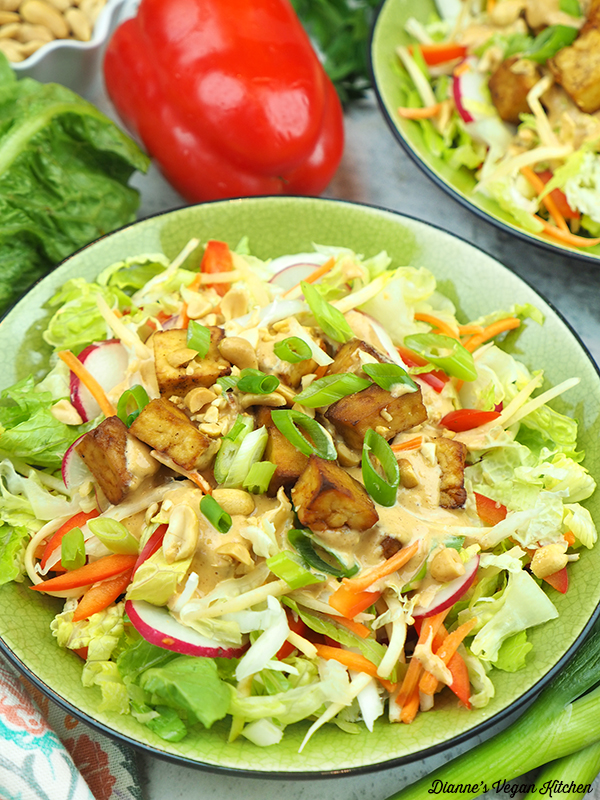 close up of pad thai salad