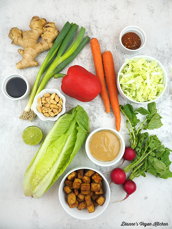 ginger, scallions, carrots, cabbage, radishes, lettuce, tofu, peanuts, peanut butter, limes, and spices